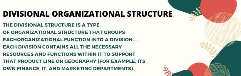 Divisional organization structure